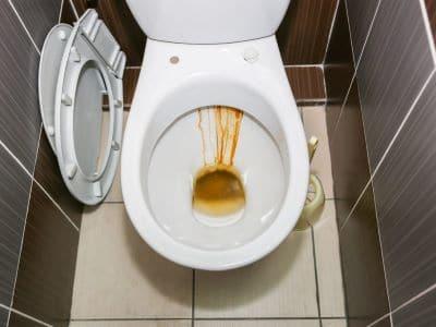 toilet bowl rust shoreline